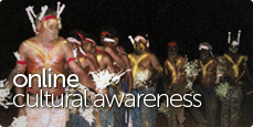 Online Cultural Awareness Home Page